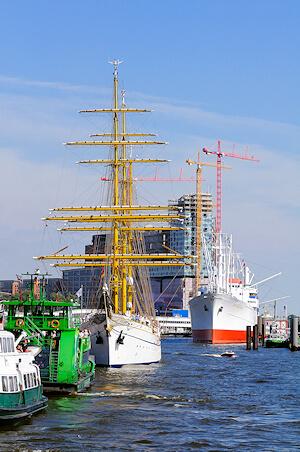 fachgerechte Schimmelbeseitigung in Hamburg