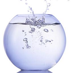 Wasser und Kondensat sorgen für Schimmel