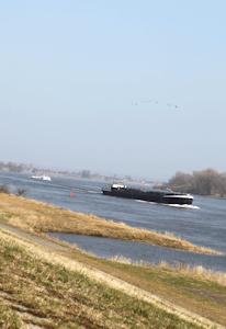 Neuengamme am Deich der Elbe