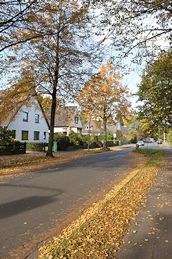 Hamburg Iserbrook - Arbeitsfeld Maler Bollers