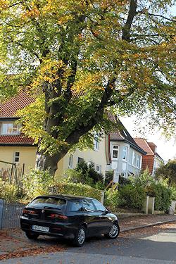 Groß Flottbek in Hamburg