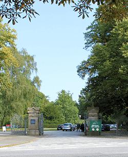 Hamburg Ohlsdorf - Friedhof